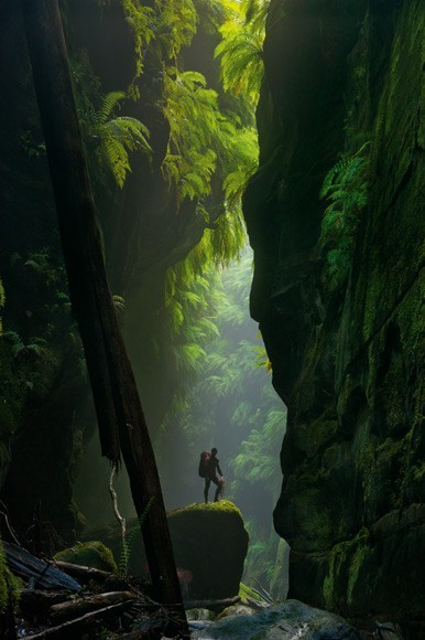 electric-voltage:  Blue Mountains, Austrailia