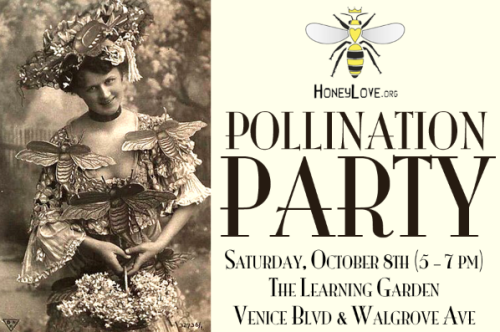 SEE YOU TONIGHT @ 5PM!!  THIS MONTH'S FREE HONEYLOVE WORKSHOP: POLLINATION PARTYRSVP on Facebook or Meetup (rsvp not required… all ages are welcome!)
