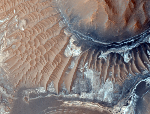discoverynews:  Martian Life's Last Stand If there was life on Mars, scientists may have found its final resting spot. Read more