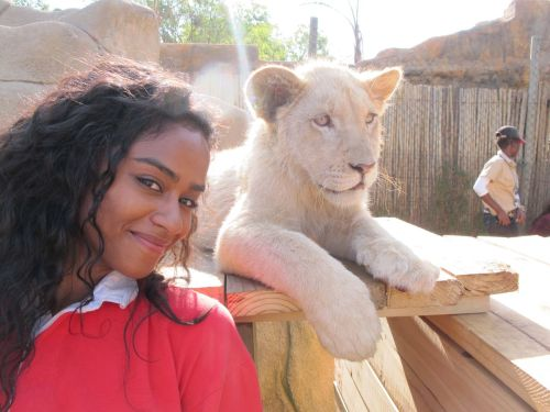 vashtie:  lion kings (SOUTH AFRICA, 2011)