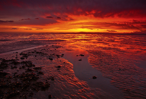 lori-rocks: Lighting the Storm Clouds , Morecambe Bay  By Steve Thompson