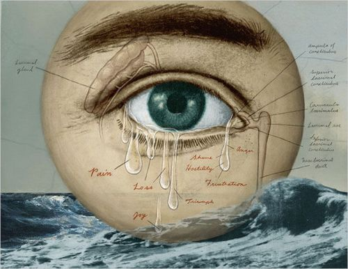darksilenceinsuburbia:  Anatomy of Tears.