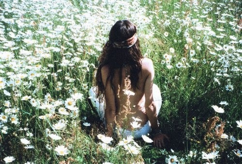 daisy fields on my mind…