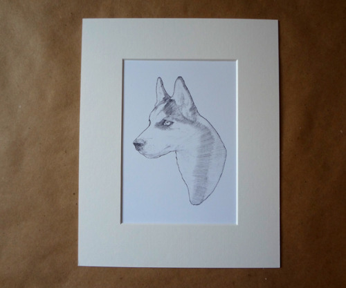 Prints are now finally available on Etsy!  There are seven dog breeds so far, more to come so contact me to be added to the mailing list for updates on new additions.  Here's the link: http://www.etsy.com/shop/jordanspilman Thanks! Jordan