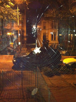 Our pet spider. #capitolhill