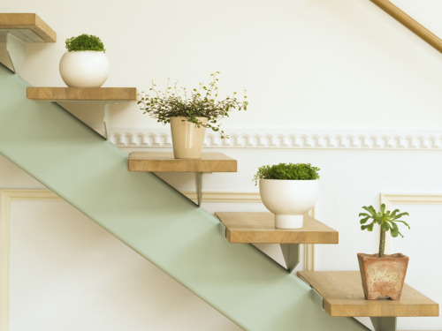 Shelves that look like stairs (via Design home interior greenery 72324)