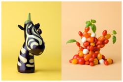 Vegetable art by Carl Kleiner