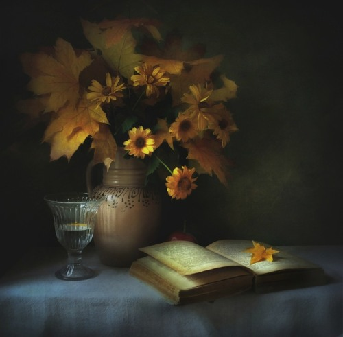 art-and-dream:  Still life photography wonderful style by Таня Ви
