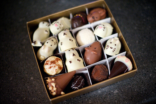 mason-jars:  Moonstruck chocolates, handmade animal shapes (by bgolub)