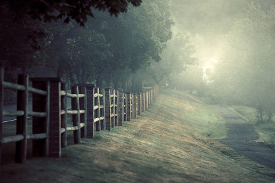 clinicallysane:  Fence in Sammamish by sparth on Flickr.