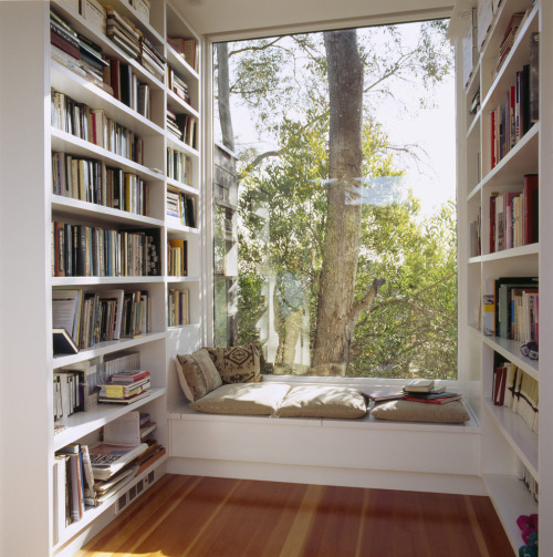 bookworm73:  Looks like a lovely place to spend a rainy day reading…  I'd love to nap there but I guarantee one dog and three cats would have to be moved before any reading/napping could get done.