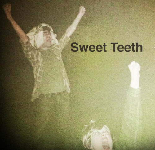 theidiotking:  I Made You A New/Old Mix - Sweet Teeth Last night I found a playlist on iTunes that I didn't recognize, and saw that it had 17 songs I really loved. I didn't REALLY remember making it, but as I was playing it I realized that all the songs had one unifying factor: female vocalists. Please enjoy it, along with this triumphant picture of me yelling at airplanes on the beach with my wonderful friend Eleanore, who was wearing a very important wig (Photo by Dan Kwan). 1. Land of Talk - Sixteen Asterisk // 2. Sharon Van Etten - Love More // 3. Headlights - We're all Animals // 4. Georgie James - More Lights // 5. The Mynabirds - Let the Record Go // 6. Amy Miles - King of Girls // 7. Liz Phair - Fuck and Run // 8. That Dog - Never Say Never // 9. Thao w/The Get Down Stay Down - Know Better Learn Faster // 10. Lake - Sing 99 90 // 11. Lykke Li - Little Bit // 12. The Blow - Fists Up //  13. Mates Of State - True Love Will Find You in the End (Daniel Johnston cover) // 14. The Happy Hollows - Tell Me // 15. Giant Drag - Everything's Worse // 16. your friend, kimi - Heart of Glass (Blondie cover) // 17. Charlotte Gainsbourg - Voyage Download  Dave made this for you!