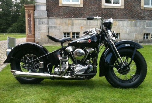 piratetreasure:  1947 knucklehead