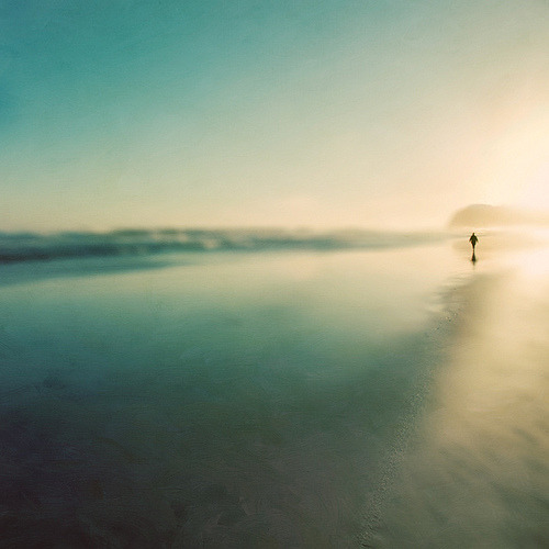 annaharo:  into reality (by borealnz)