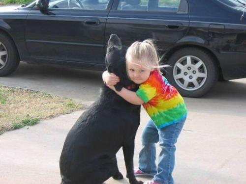 do-not-toy-with-my-emotions:  Our 14-year-old dog Abbey died last month. The day after she passed away my 4-year-old daughter Meredith was crying and talking about how much she missed Abbey. She asked if we could write a letter to God so that when Abbey got to heaven, God would recognize her. I told her that I thought we could so, and she dictated these words: Dear God,Will you please take care of my dog? She died yesterday and is with you in heaven. I miss her very much. I am happy that you let me have her as my dog even though she got sick. I hope you will play with her. She likes to swim and play with balls. I am sending a picture of her so when you see her you will know that she is my dog. I really miss her. Love, MeredithWe put the letter in an envelope with a picture of Abbey and Meredith and addressed it to God/Heaven. We put our return address on it. Then Meredith pasted several stamps on the front of the envelope because she said it would take lots of stamps to get the letter all the way to heaven. That afternoon she dropped it into the letter box at the post office. A few days later, she asked if God had gotten the letter yet. I told her that I thought He had.Yesterday, there was a package wrapped in gold paper on our front porch addressed, 'To Meredith' in an unfamiliar hand. Meredith opened it. Inside was a book by Mr. Rogers called, 'When a Pet Dies.' Taped to the inside front cover was the letter we had written to God in its opened envelope. On the opposite page was the picture of Abbey & Meredith and this note: Dear Meredith, Abbey arrived safely in heaven. Having the picture was a big help and I recognized her right away. Abbey isn't sick anymore. Her spirit is here with me just like it stays in your heart. Abbey loved being your dog. Since we don't need our bodies in heaven, I don't have any pockets to keep your picture in so I am sending it back to you in this little book for you to keep and have something to remember Abbey by. Thank you for the beautiful letter and thank your mother for helping you write it and sending it to me. What a wonderful mother you have. I picked her especially for you. I send my blessings every day and remember that I love you very much. By the way, I'm easy to find. I am wherever there is love. Love, God Don't say you're too busy to reblog this.  TEARS.