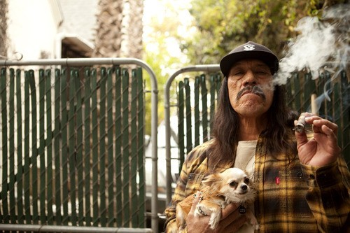 Danny Trejo is always a badass, no matter how small his dog is.