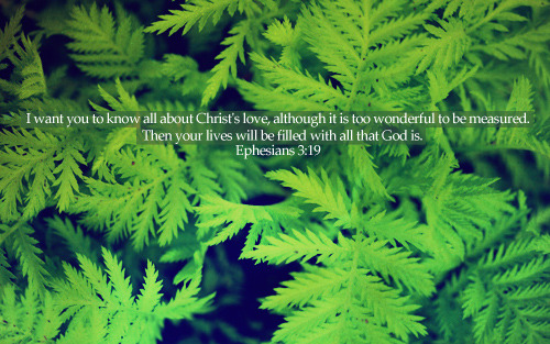 """I want you to know all about Christ's love, although it is too wonderful to be measured. Then your lives will be filled with all that God is."""