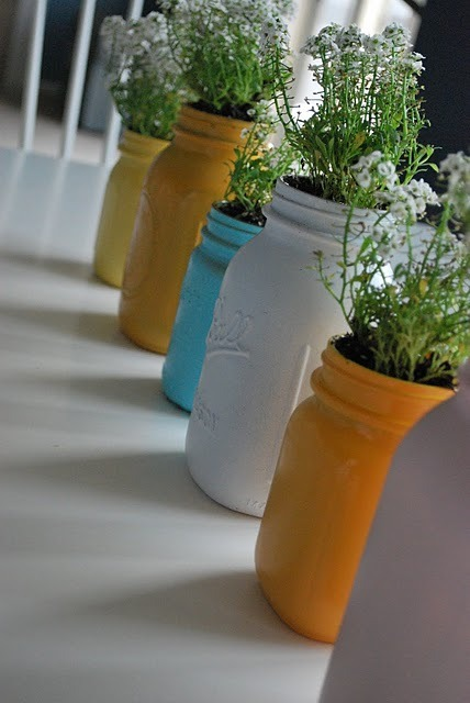 Herbs and plants in spray-painted Mason jars… colorful accent for the kitchen (via By Just Another Day in Paradise)