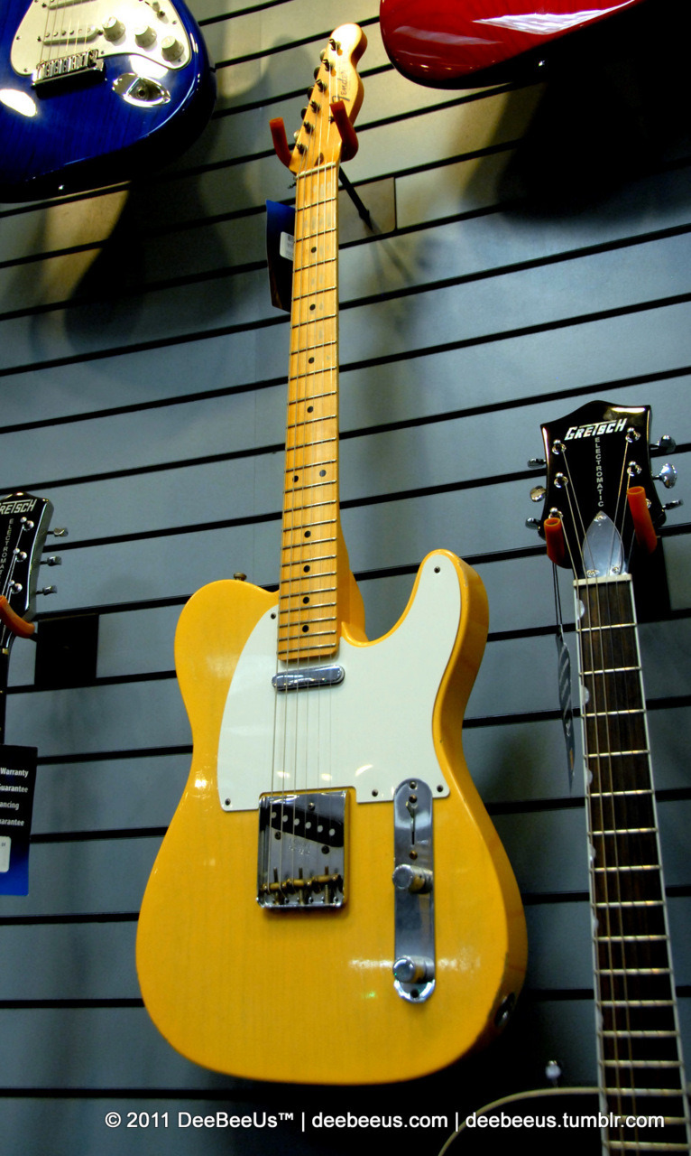 deebeeus:  Saw this lovely Tele last night too…it not expensive for a Custom Shop instrument either at $2300.  If I didn't alreay have 2 Custom Shop Telecasters, I would be very tempted by this one…I am a sucker for blondes!  :D Toronto Canada, September 28, 2011.