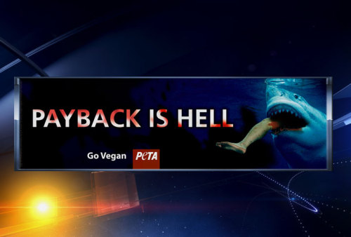 "Wow PETA. Fuck you.  thedailywhat:  Controversial Ad Campaign of the Day: PETA is stirring up controversy (so what else is new, amirite?) with a new veganism campaign that pokes fun at the victim of recent shark attack. 21-year-old CJ Wickersham took a serious shark bite to his left thigh while spearfishing off Anna Maria Island. PETA's response: ""Payback is hell."" ""It may be an unusual way to get the message across,"" PETA rep. Ashely Byrne said, ""but I think it will cause people to be more sensitive towards fish."" Byrne added that PETA is glad Wickersham ""is going to be alright,"" but hopes his injury will cause anglers ""to rethink fishing."" At least one community is refusing to display what one fisherman called ""PETA's typical propaganda"" — Anna Maria Island. ""We have no billboards in the city, and we do not allow advertising on our trolley benches,"" said Mayor Michael Selby. [mysuncoast.]"
