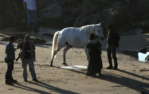 imaceobitch:  LOL!  The horse having a pee with Kristen standing there xD
