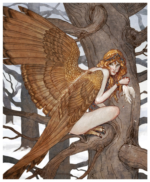 artforadults:  Harpy by bluefooted