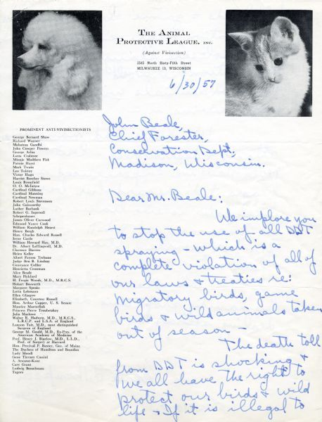 Disapproving kitten disapproves. Animal Protective League Letter, 1957. Source: Wisconsin Historical Society. Letter from Marie Thompson of Milwaukee, Wisconsin, President of the Animal Protective League to John Beale, Chief Forester at the Wisconsin Conservation Department regarding the use of DDT. The letterhead consists of photographs of a dog and a cat. The left margin lists prominent anti-vivisectionists.