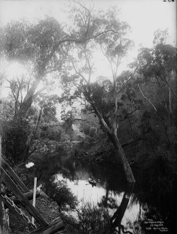 Pool by Grand Arch, Jenolan Caves by Powerhouse Museum Collection on Flickr.