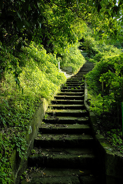 agoodthinghappened:  Green stairs to… by manganite on Flickr.