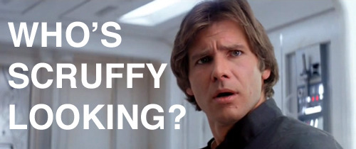 "50 Reasons We Love Empire Strikes Back Insults in the Star Wars universe don't make much sense in our system, but as takedowns go, Leia's is one of the most quotable: ""Why, you stuck up, half-witted, scruffy-looking Nerf herder!"" To which, naturally, Han replies: ""Who's scruffy-looking?"" Guess he doesn't think Nerf herders are all that bad. [FOR 49 MORE REASONS, CLICK ON HAN OR FOLLOW THIS LINK]"