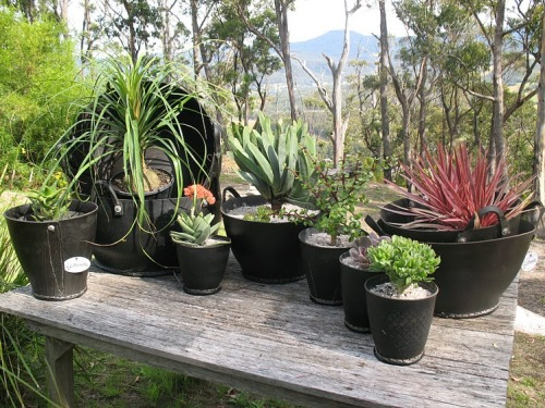 Recycled tires become garden containers. From UBeauty, Australia.  Are tires safe for gardening? Read the Wrap: The Composition of a Tyre: Typical Components.