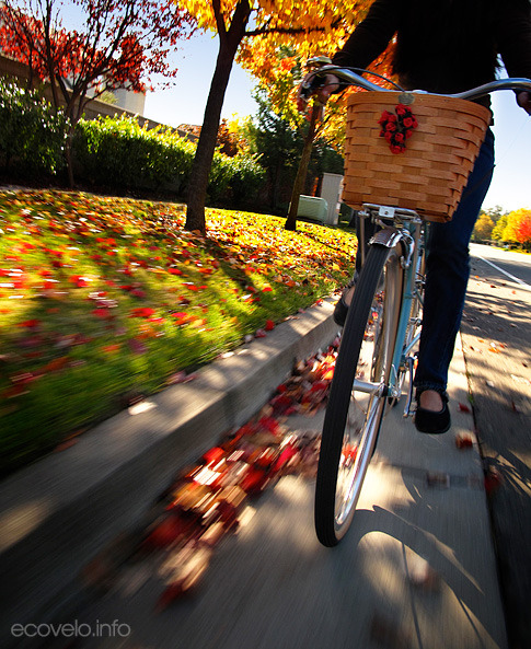 (via EcoVelo » Blog Archive » Fall is in the Air!)