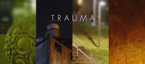 "I'm particularly excited to try out Trauma from the new Humble Indie Game Bundle. According to the game's website Trauma ""tells a story of a young woman who survives a car accident. Recovering at the hospital, she has dreams that shed light on different aspects of her identity - such as the way she deals with the loss of her parents."""