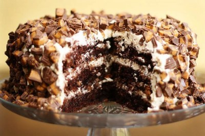 Chocolate Peanut Butter Cup Cake….oh my!