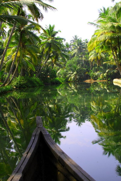 princess-lovely:  strangers-on-earth:  desert-dreamer:  kerala backwaters, south india  -  ==