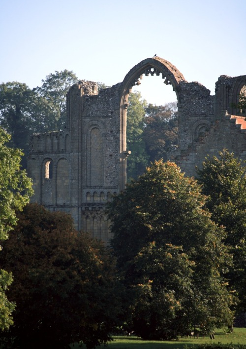 medievallove:  Acre priory ruins, Norfolk, England. 11th c. Original by nickpix2011 on Flickr.
