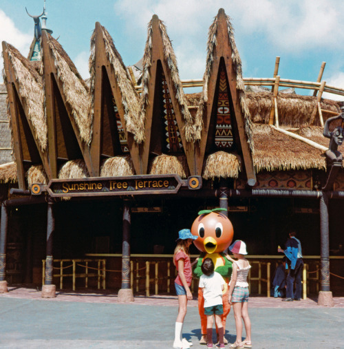 pagingretroland:  Happy 40th Anniversary, Magic Kingdom/Walt Disney World. Have some Orange Bird.