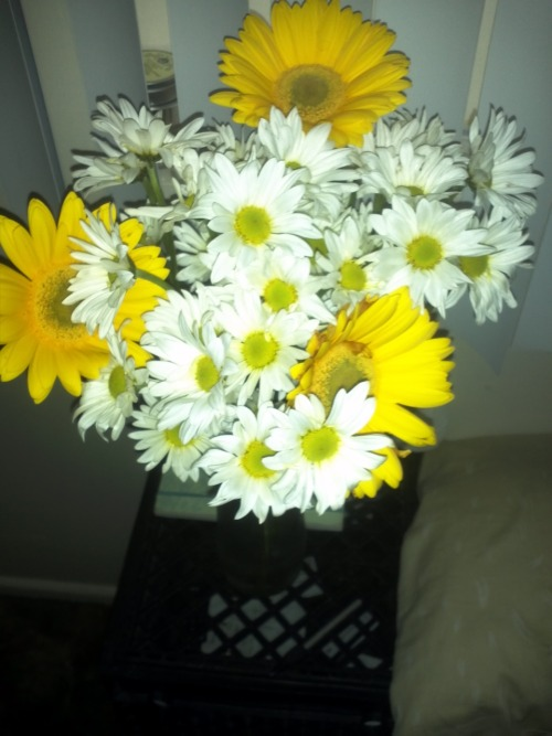 scratch the last post, Josh brought me flowers even though I was the one acting like a grumpy bitch. Best boyfriend.