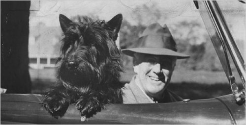 "Check out our new Tumblr: fdr-fala:  FDR and his ""little dog Fala"" were inseparable. (Tapping the Inner Dog - NYTimes.com)"