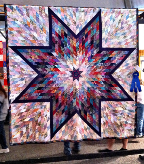 imminentenvironment:  Quilt entry at the VA State Fair by 1st place winner Drema Epley of Norfolk.