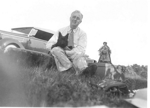 "FDR at a picnic on ""Sunset Hill"" near Pine Plains, NY. Fala is 4 months old. The doll next to the president is a handmade shaker doll made by Mary Garettson of Rhinebeck, N.Y. August 8, 1940 (FDR Presidential Library & Museum)"