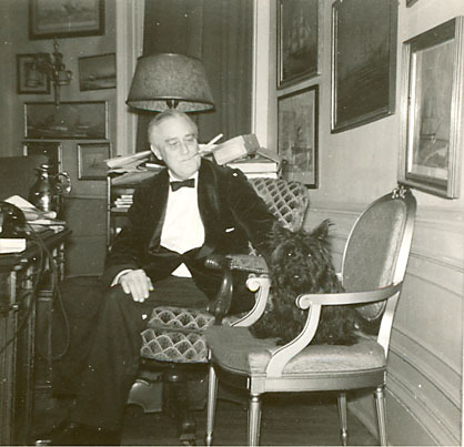 "From our new friend:  Arguably history's best known presidential pet was Fala, a Scottish terrier given to Franklin Roosevelt in 1940 by his distant cousin Margaret Suckley. Fala appeared in political cartoons, news articles, movie shorts, and even FDR's campaign speeches. Secret Service agents called Fala ""The Informer"" because, during secret wartime presidential trips, the dog was instantly recognized while out on his walks. But this celebrity was put to good use in 1941 when Fala was named national president of Barkers for Britain.  (National Archives) Photo: FDR and Fala in the White House Oval Study, December 20, 1941."