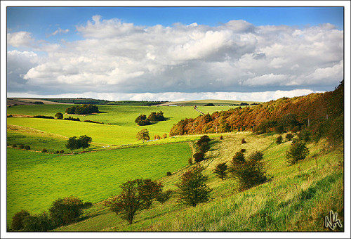 brighton-uk:  Sussex Downs by i eaт sтars on Flickr.