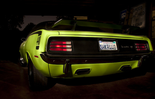 j3rseygirls:  the 'cuda by jankertown on Flickr.