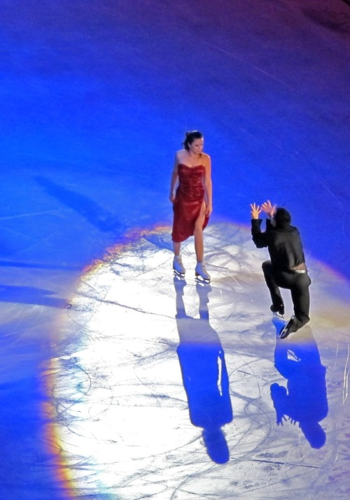 beautiful-shapes:  Opera on Ice Anna Cappellini & Luca Lanotte