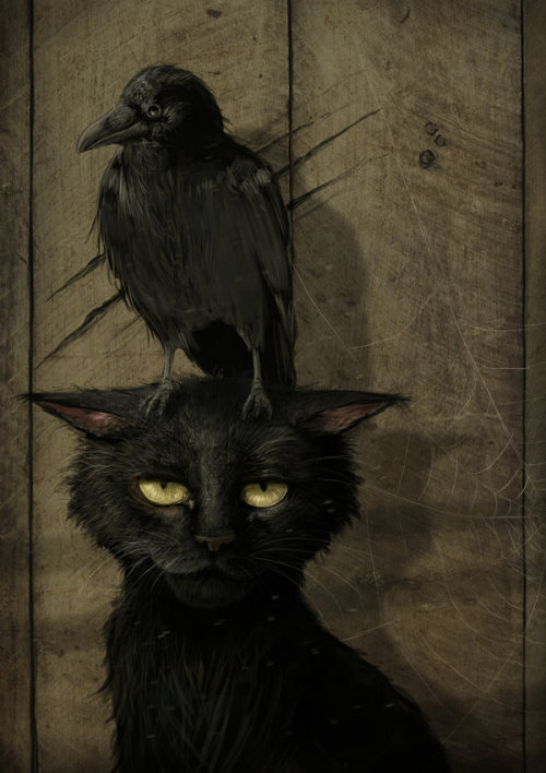 danceabletragedy:  The Raven and the Cat by *jerry8448  Look at my Tumblr ID. This looks exactly like my cat.