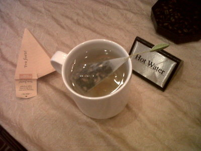Pyramid shaped tea with a leaf on top! Sweet ginger white tea. I'm in love. -mari