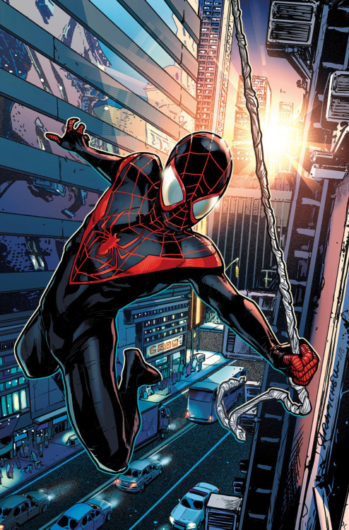 The New Ultimate Spider-Man // Art by Sara Pichelli