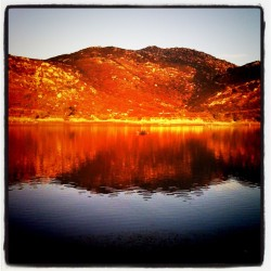 Reflection on Lake Poway