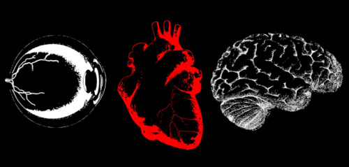 laughingsquid:  Eye Heart Brains, A T-Shirt To Help Fund Brain Cancer Research